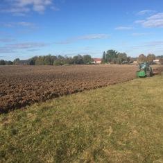 "Field in farm ""Šovītes"""