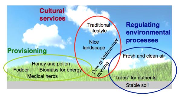 ecosystem-serices-grassland