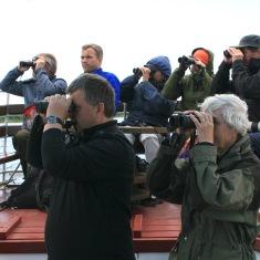 norvegu-ornitologai2