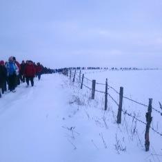 [:en] Many grasslands were visited during the hike [:lt]Žygis tęsėsi per gausybę pievų [:lv] Pasākuma laikā tika apmeklēti Dubisas zālāji