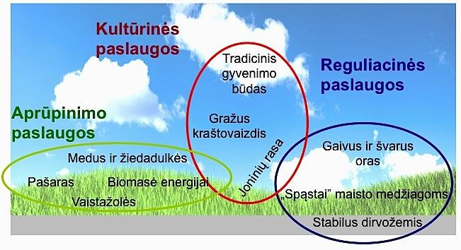 ekosistemines-paslaugos