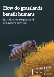 cover-how-grasslands-benefit-human