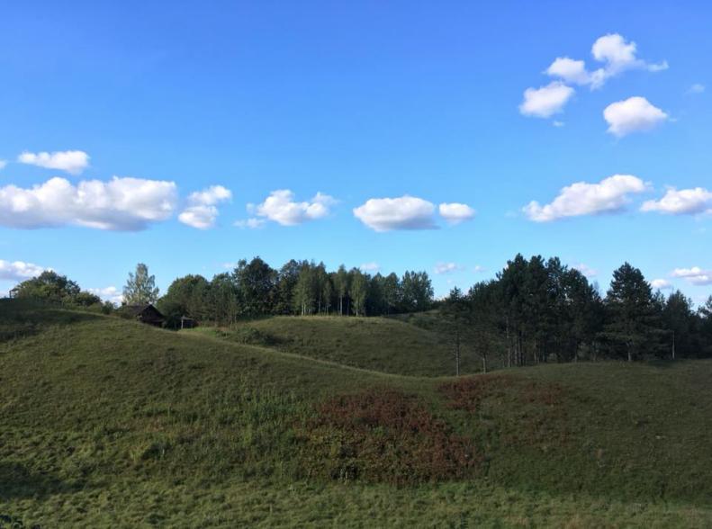 After grassland restoration works